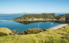 Bay Of Islands, Foto: Alistair Guthrie