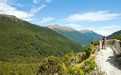 Haast Pass Lookout, Mt Aspiring National Park
