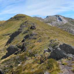 Mt. Arthur | Kahurangi National Park