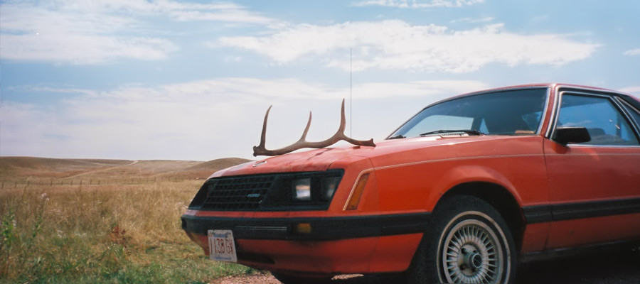 USA – Coast to Coast im Mustang