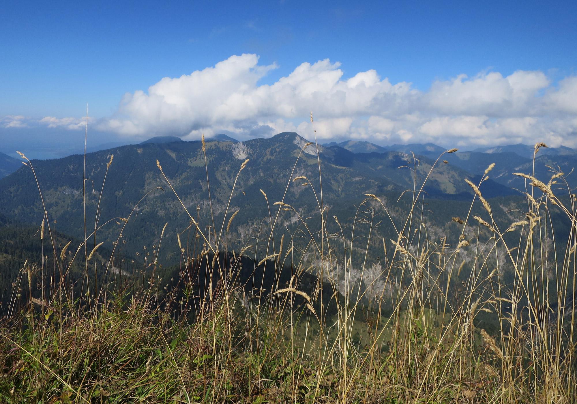 Blick von der Gipfelkreuz Halserspitze