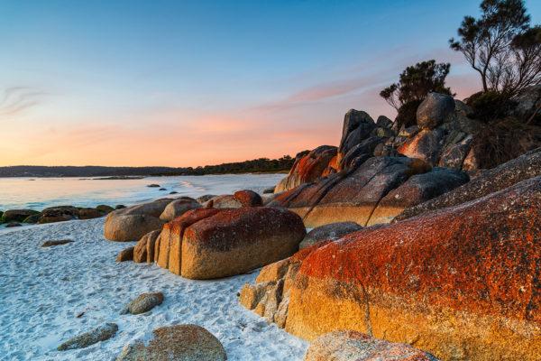 "Bay of Fires,  von Craig Milson / <a href=""https://www.shutterstock.com/de/image-photo/cosy-corner-bay-fires-tasmania-australia-1209590119?src=yIF4rl7rLG8qzaEmlelwDw-1-60"">Shutterstock</a>"