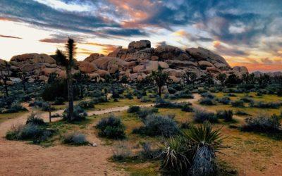 Die schönsten Nationalparks Kaliforniens