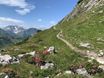 Zwischem Koblatpass und Gemstelpass