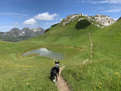 See zwischen Hundskopf und Biberkopf