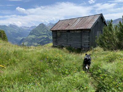 Mäuerleshütte