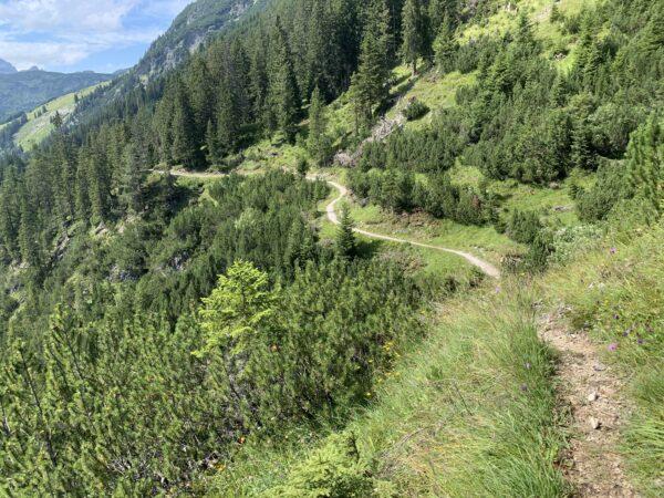 Hier treffen der zum Teil sehr schmale Bergpfad auf den vergleichsweise breiten Lechweg, einem Weitwanderweg.
