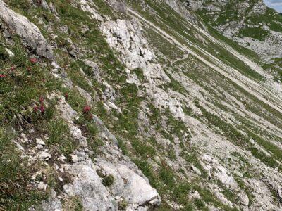 Zum Teil ausgesetzte Stellen entlang der Flanke des Karhorn